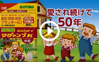 Hyponex Nhật Bản Quảng cáo doanh nghiệp